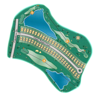ging pointe map